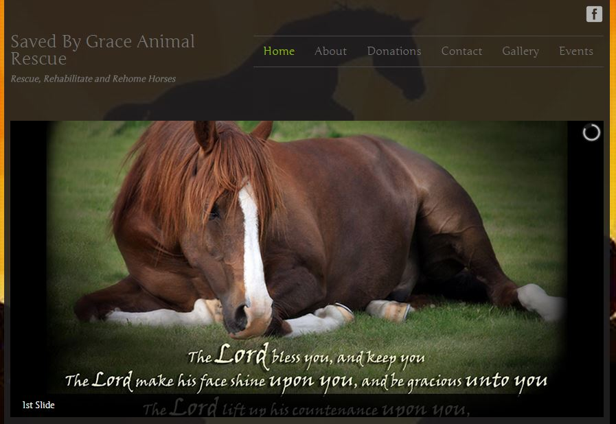 Saved By Grace Animal Rescue